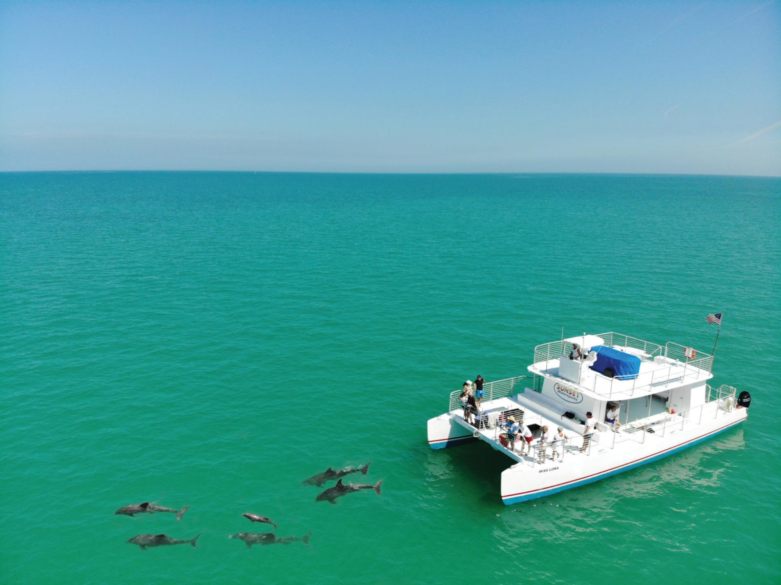 sunset watersports key west dolphin snorkel trips